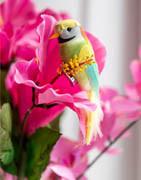 Hawaii temafest | Köp tropiskt festpynt online
