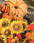 Höst tema   Köp pynt och höstens vackra naturelement här!