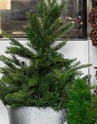 Allt inom konstgjorda julgranar & konstgjord gran m.m. ⇒ Stort urval online!