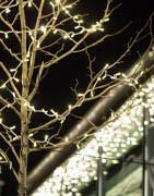 Julbelysning | Allt inom julbelysning till hem och butik!