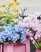 DK Konstgjorda blommor och plantor