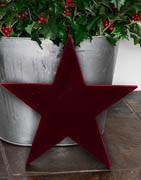 Stjärnor | Stort urval av julstjärnor | Brøndsholm A/S