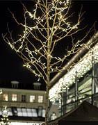 Ljusslingor | Julbelysning och LED-ljusslingor till julen