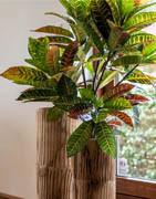 Konstgjorda växter | Stort urval av konstgjorda gröna krukväxter