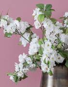 Konstgjorda blommande grenar | Stort urval av grenar till pynt