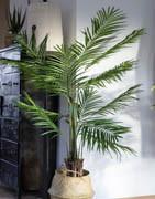 Konstgjorda träd & palmer | Dekorationsträd till butiken