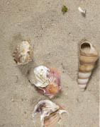 Konstgjorda stenar och sand | Köp dekorationssten och sand online här!